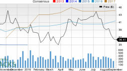 Can Almost Family (AFAM) Stock Continue to Grow Earnings?