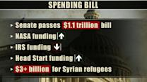 Senate sends $1.1 trillion budget plan to Obama