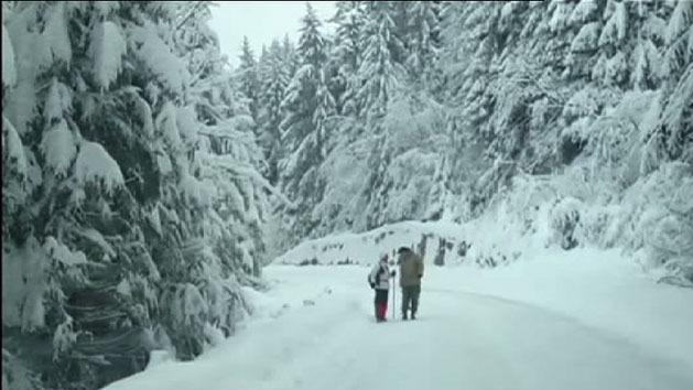 Blizzards close roads in Europe