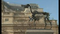 Trafalgar Square taken over by horse's skeleton
