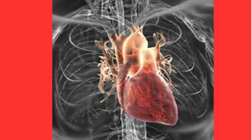 4 Warning Signs Of Clogged Arteries