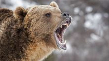Bears Bite Banks, Techs Hard; Nasdaq 100 Set For Biggest Drop Since Sept. 9