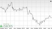 World Point Terminals (WPT) in Focus: Stock Rises 5.8%