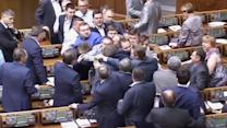 Brawl breaks out in Ukrainian parliament over downed plane