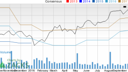 How Cognex (CGNX) Stock Stands Out in a Strong Industry